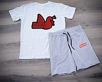 Мужской летний набор футболка+шорты Peaceful Hooligan ST468, Реплика