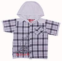 Рубашка для мальчиков от Валери-Текс (98 см)