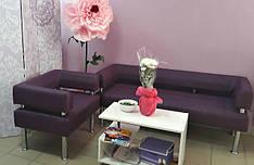 Кресло и диван Тонус Флай 2216