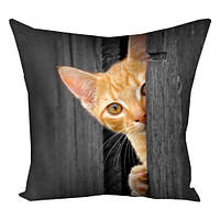 Подушка с принтом 30х30 Animalistic Котёнок,выглядывающий из двери (3P_DDZ012)