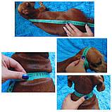 Одежда для маленькой собаки ручной работы,свитер для таксы,свитер для собаки, фото 9