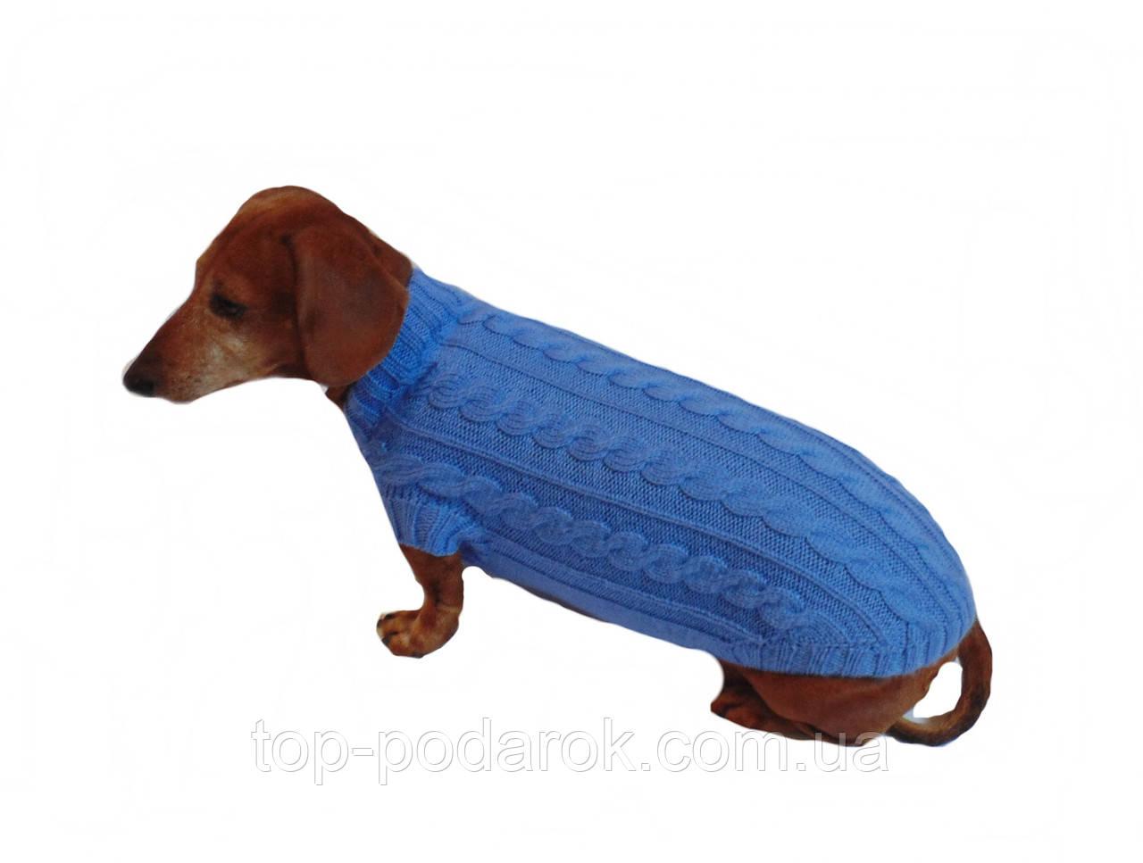 Одежда для маленькой собаки ручной работы,свитер для таксы,свитер для собаки