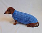 Одежда для маленькой собаки ручной работы,свитер для таксы,свитер для собаки, фото 3
