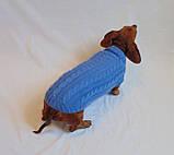 Одежда для маленькой собаки ручной работы,свитер для таксы,свитер для собаки, фото 4