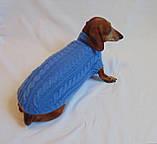 Одежда для маленькой собаки ручной работы,свитер для таксы,свитер для собаки, фото 5
