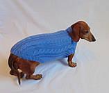Одежда для маленькой собаки ручной работы,свитер для таксы,свитер для собаки, фото 6