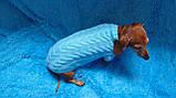 Вязанная одежда для собаки,свитер для таксы,свитер для собаки,теплая одежда для собаки, фото 3