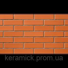 Кирпич СБК Красный (Морковный) М-175