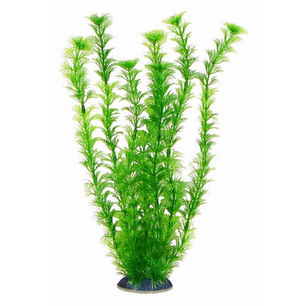 Aquatic Plants Аквариумное Растение, 34 См Х 6 Шт/уп. Арт.3458, фото 2