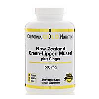 California Gold Nutrition, Новозеландский зеленогубый моллюск с имбирем, 500 мг, 240 капсул в растительной оболочке, фото 1