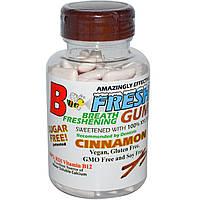B-Fresh Inc., Освежающие дыхание жевательная резинка, корица 100 шт.
