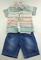Детские костюмы 1, 3 года Турция летний с шортами для мальчиков разные цвета (КД27)