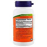 Астрагал 70%, 500 мг, Now Foods, 90 гелевых капсул, фото 2