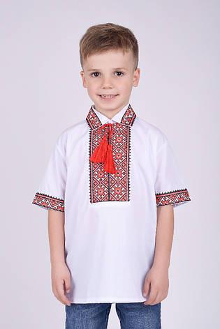 Вышиванка для мальчика с коротким рукавом и воротником на рост 110-152, фото 2