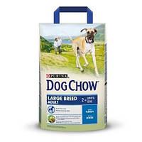Сухой корм для собак весом больше 25 кг с индейкой Dog Chow Adult 14кг