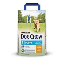 Сухой корм для щенков с курицей Dog Chow Puppy 14кг