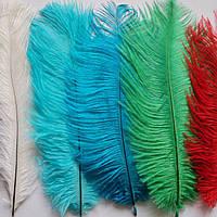 Мода на натуральные перья страуса
