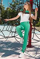Трикотажный летний спортивный костюм зеленый