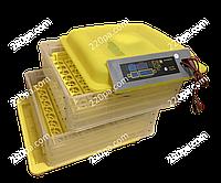 Инкубатор HHD-96 (12V)