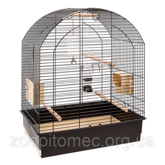 Клітка для середніх папуг