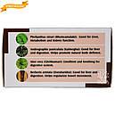 Аюр Нормалив (Holistic Herbalist) - естественная поддержка печени, 60 таблеток, фото 4