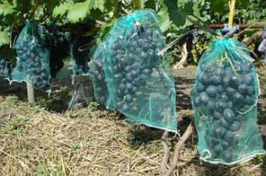 Сетка для  защиты винограда 5 кг (28*40 см), 50 шт, зеленая
