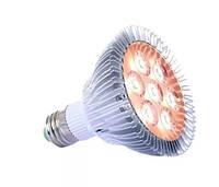 Светодиодная фитолампа 21Вт - GrowLux 21W Nano Full Spectrum (фитолампа полного спектра, лампа для суккулентов
