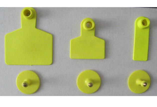 Ушная бирка D 60x70 mm, фото 2