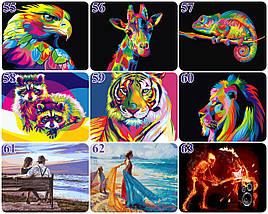Картины по Номерам 40x50 см. Огромный выбор. Опт, фото 3