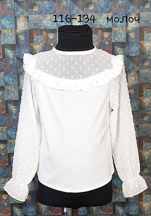 Школьная блузка Милашка 116-134 молочный, фото 2