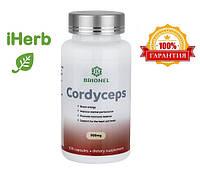 Кордицепс Брионель (Brionel) 100 кап 500 мг