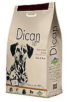Сухий корм для дорослих собак середніх та великих порід з тунцем і рисомом DICAN UP TUNA AND RICE