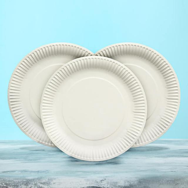 Одноразовая картонная посуда фото