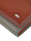 Женский кошелек из натуральной кожи Rainbow ТМ DR. BOND, фото 4