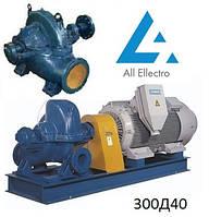 Насос 300Д40 (насос 300D40)