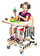 Реабилитационное кресло Zebra (Зебра) AkcesMed (Польша)