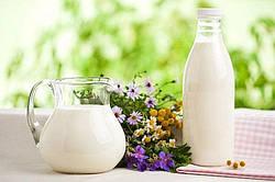 Прогнози розвитку глобального молочного ринку та перспективи України