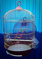 Круглая клетка для птиц ™️ Золотая Клетка 33*53, фото 1