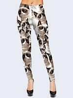 Леггинсы женские GRUMPY CAT