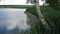 Чистка озёр в Киевской области, фото 1