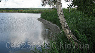 Чистка озёр в Киевской области