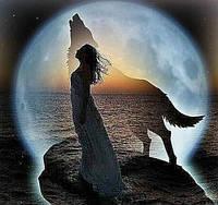 Алмазная вышивка на подрамнике Волк с девушкой на закате 30 х 30 см (арт. TN445)