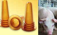 Соска для годування тварин