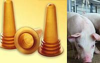 Соска для кормления животных