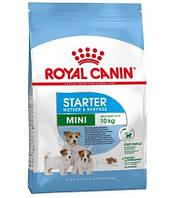 Royal Canin Mini Starter 1кг - корм для щенков мини пород