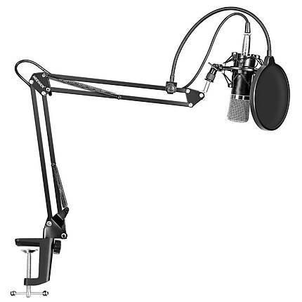 Студійний конденсаторний мікрофон BM-700 Gold з стійкою, фото 2