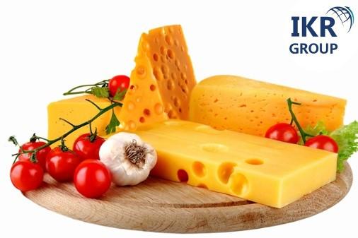 Технология производства твердых сыров