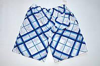 Спортивные шорты , бело-синие