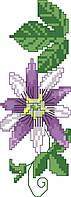 Схема для вышивки на канве Клематис РКан 5006
