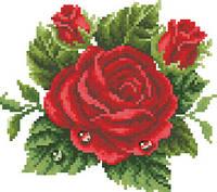 Схема для вышивки на канве Капельки росы на красной розе РКан 5519